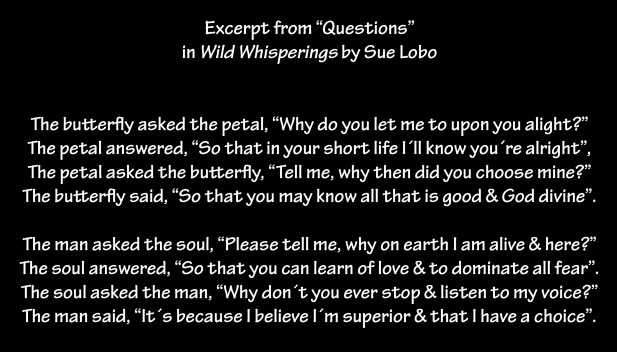 "Excerpt from ""Questions""  in Wild Whisperings by Sue Lobo"