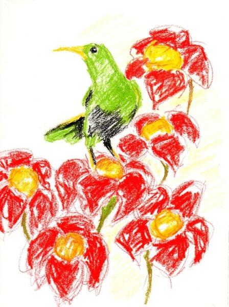 crayon-663940_960_720