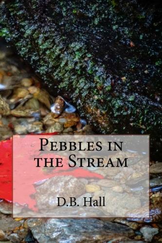 Pebbles in the Stream