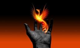 hand-1615796_960_720