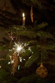 christmas-tree-466456_960_720