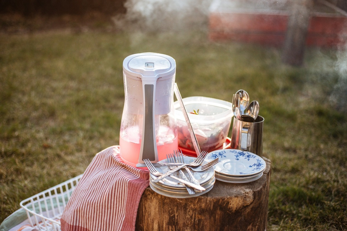 Inspiration Call: Picnic Scavengers