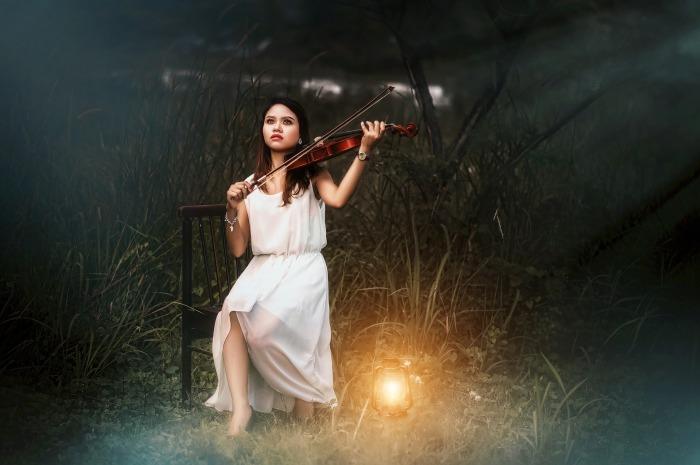 violin-2902804_1920