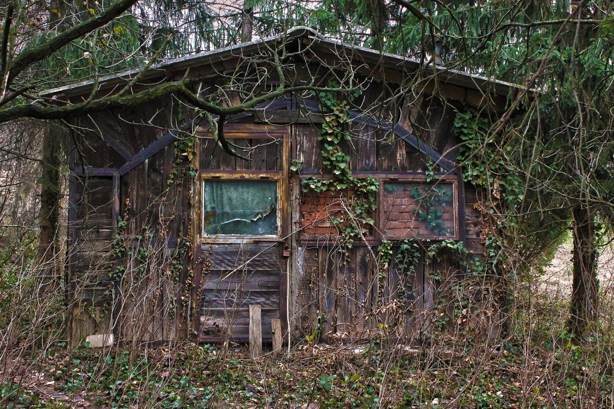 Inspiration Call: What story would the walls in this house tell if they could speak?