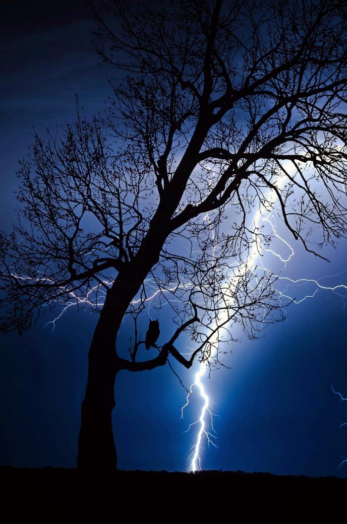 thunderstorm-2353703_1920