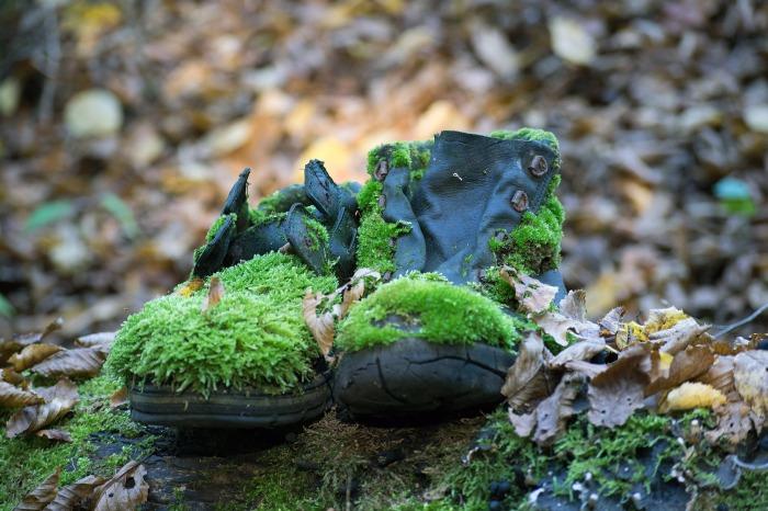 shoes-2858296_1920